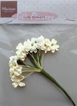 MD: Silk Flowers; Off White