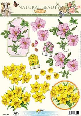 Natural beauty: lavatera, narcis