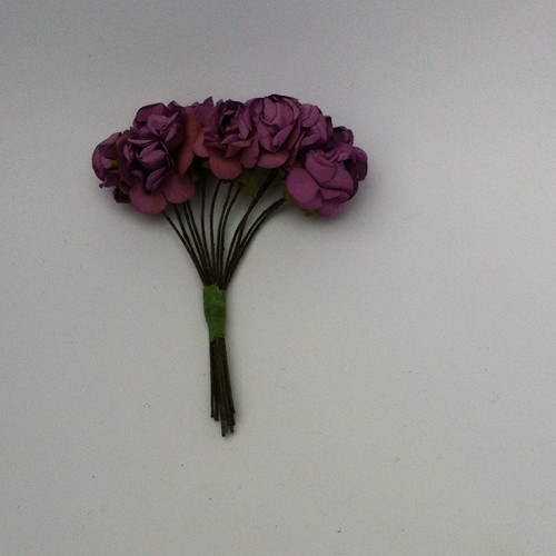Ancho Color: 12 x Roses; Purple