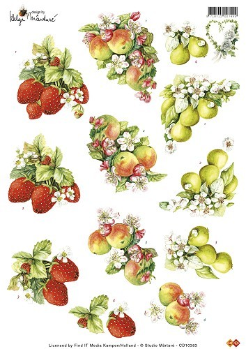 CD: Martare; Fruit