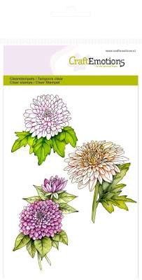 CraftEmotions: Clearstamp A6; Botanical Summer, Chrysanten tak
