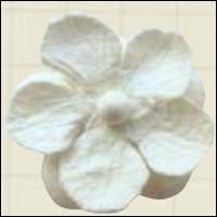 MD: Paper flowers 2 mm white (8)