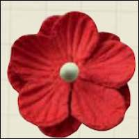MD: Paper flowers 2 mm Red (8)