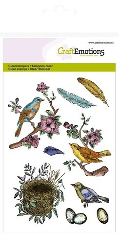 CE: Clear Stamp; birds - feathers - eggs