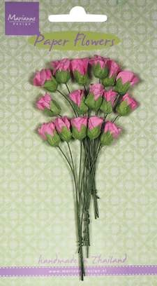 MD: 16 x Roses bud bright pink