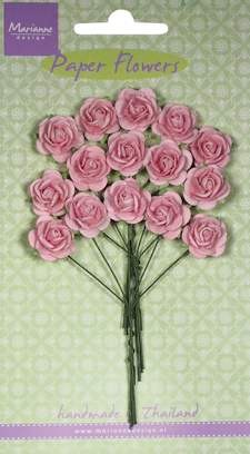 MD: 15 x Roses light pink