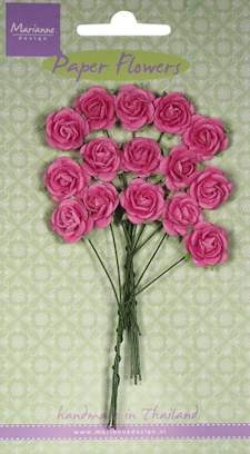 MD: 15 x Roses bright pink
