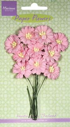 MD: 10 x Daisies light pink
