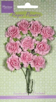 MD: 10 x Carnations light pink