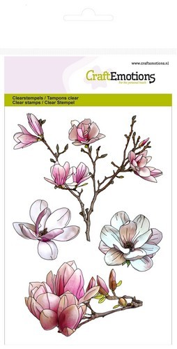CE: Clear stamp; Magnolia