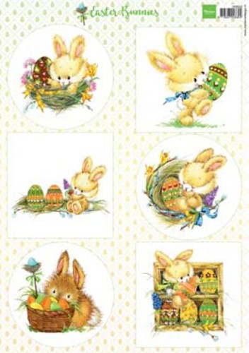 MD: Easter Bunnies