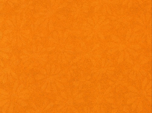 FI: 5 pcs Embossed paper A4; Daisy, Orange