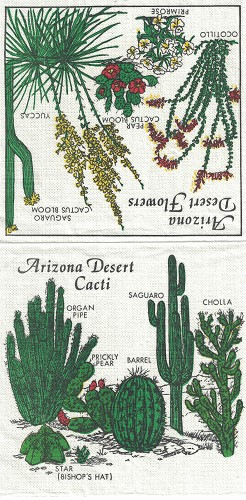 3 x MINI servet: Arizona Desert Flowers
