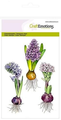 CE: Clearstamps A6; Hyacinth