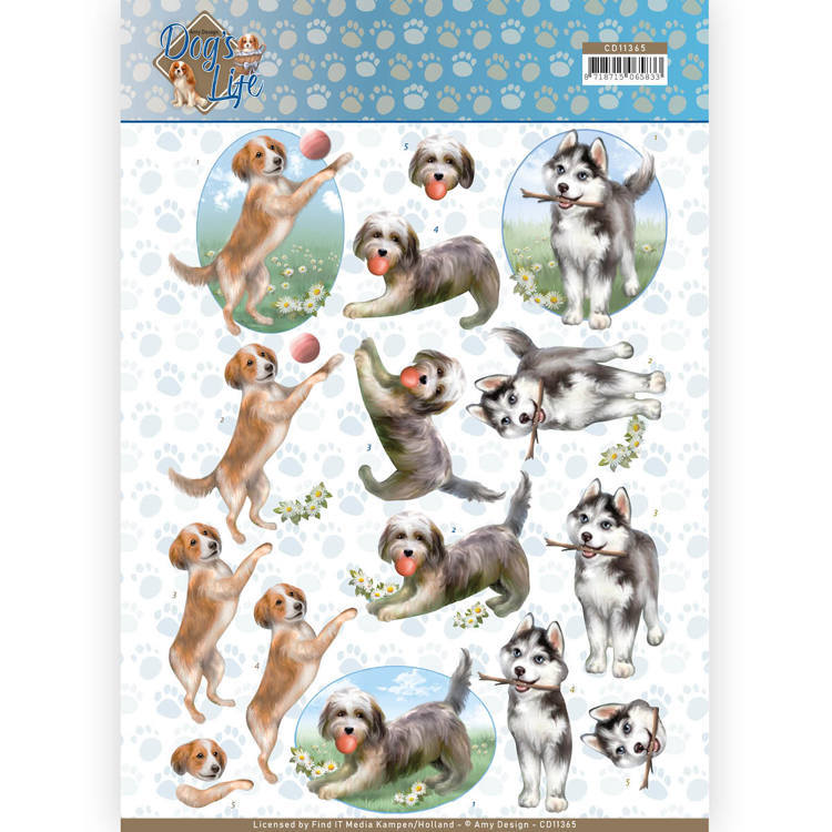 CD: Amy Design; Dog's Life - Knipvel - Playing Dogs