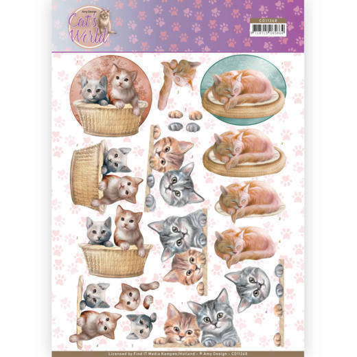 CD: Amy Design; Cats World - Knipvel - Kittens