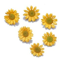 Flowers: Sunflower 32 pcs 10-20 mm