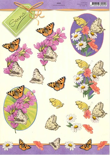 Pictures Of Flowers And Butterflies