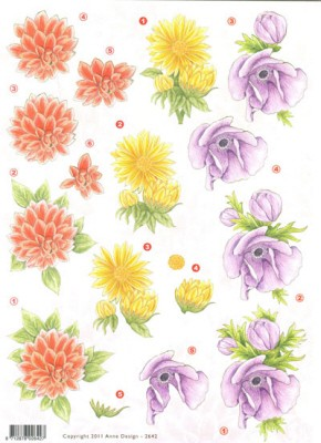 F&F: Anne design; Flowers