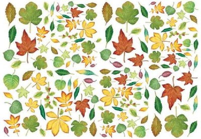 To Do Soft Paper: Leaves