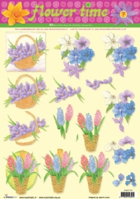 Flower Time: krokus, hyacinth, anemoon