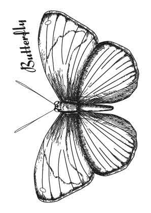 SL: Clear Stamp; Butterfly