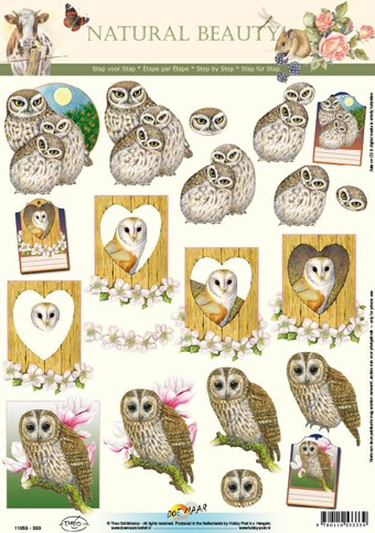 Natural Beauty: Uilen - Owls