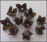 Real Leather Flower 5 pcs; BROWN