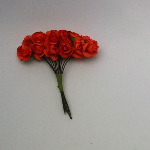 Ancho Color: 12 x Roses; Coral