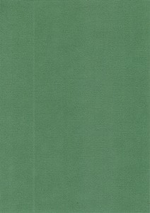 Colour Structure Paper: Evergreen